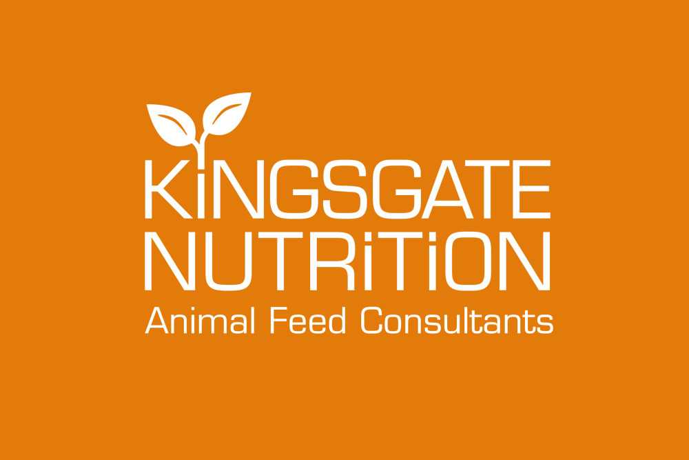 Kingsgate Nutrition Logo by Bazzoo